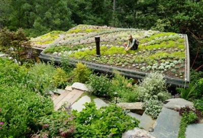 10 Советов для экологичного обновления дома