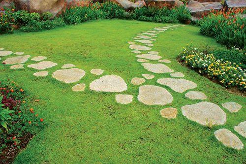Дорожки из камня на приусадебном участке — стильный интерьер ландшафта