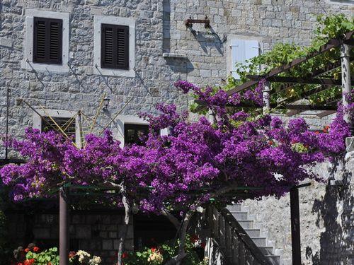 Калькулятор: считаем расходы на строительство частного дома в черногории