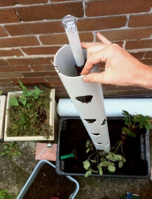 Клубника в вертикальных трубах – экономия грядок. процесс и особенности выращивания клубники в вертикальных пластиковых трубах