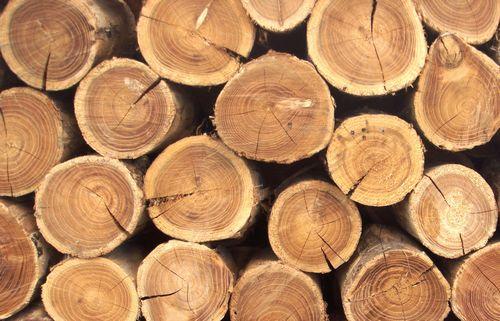 Отбеливание древесины: для чего это нужно