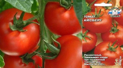 Подборка самых урожайных сортов помидоров для теплиц и открытого грунта. подробное описание, фото лучших сортов помидоров