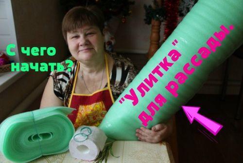 Посадка рассады перца в «улитки» от а до я (фото). как правильно ухаживать за рассадой перца «в улитке», способ пикировки перца