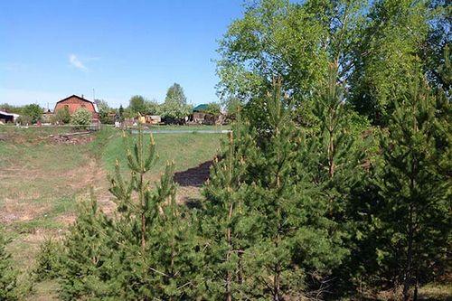Приобретение земельного участка - новый тренд среди жителей мегаполисов