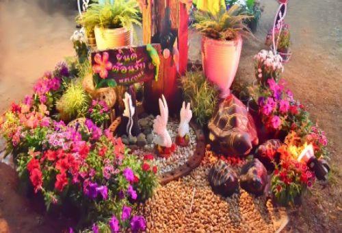Растения для декоративного сада